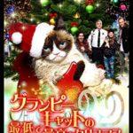 「グランピーキャットの最低で最高のクリスマス」映画感想(ネタバレ/結末)クリスマス要素と猫要素を味わいたい方向け?!